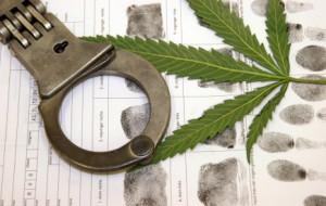 marijuana-fingerprints